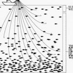 Red TOR y DEEP WEB (Internet Profunda)