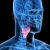 La biometría de voz: realizar operaciones bancarias con dos palabras